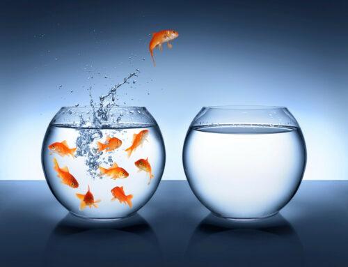 BienÊtre – Les clés pour réussir son changement professionnel
