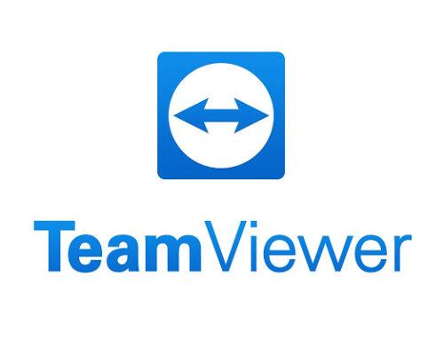 Numérique – Le succès de Team Viewer, grand gagnant de la crise sanitaire