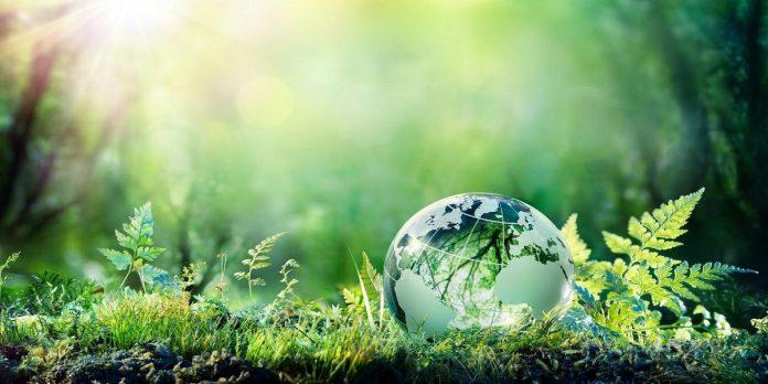 web ecologie